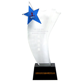 民族企业奖杯